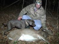 sniper-deer-4-0cef60e8c8bb03665f34daba280956a3c73735b4